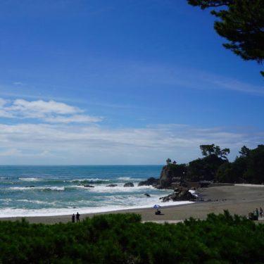 桂浜とひろめ市場の塩たたき(高知県での夏キャンプ・その2)